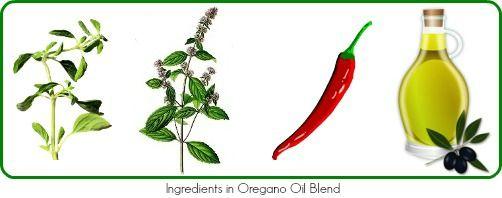 Discover the amazing health benefits of #OreganoOil - http://naturalremedieshealthyliving.com/benefits-of-organic-oregano-oil/
