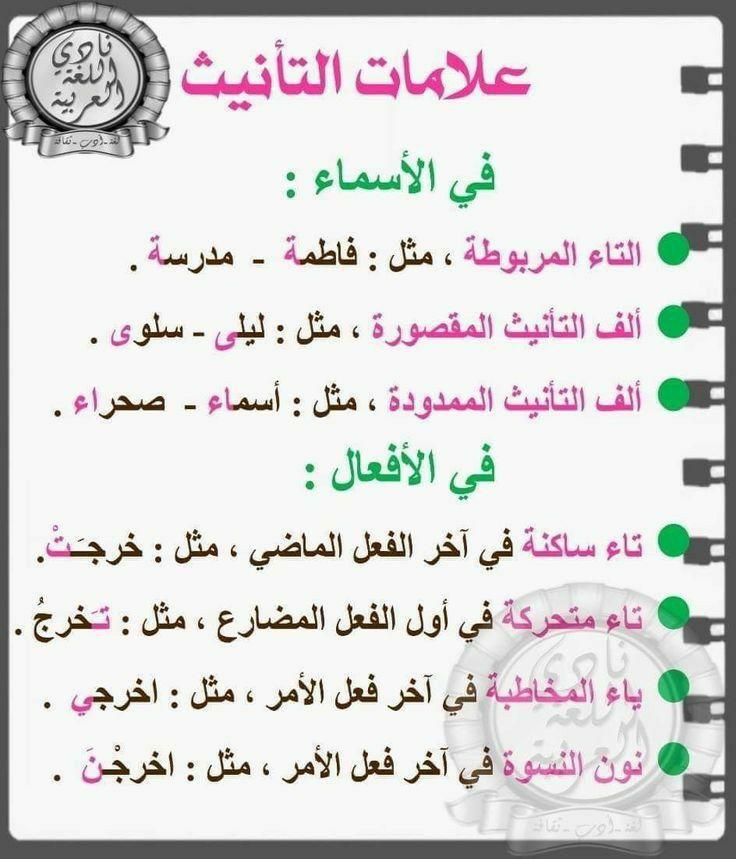 علامات التأنيث اللغة العربية In 2021 Learn Arabic Language Learning Arabic Arabic Language