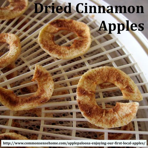 Preserving Apples - How to Make Applesauce, Apple leather and Dried Apple Slices