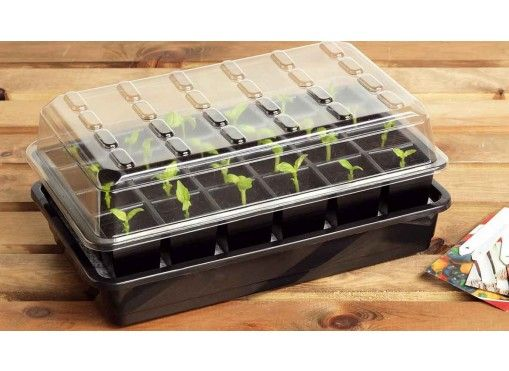 Bac à semis avec arrosage automatique - Jardin et Saisons