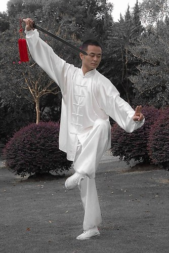 Chinese martial art 2012 Tai Chi Master Liu Yang   radicalpit@monsterpix.de