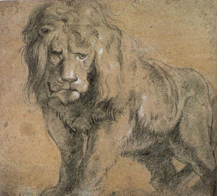 Peter Paul Rubens - Standing Lion