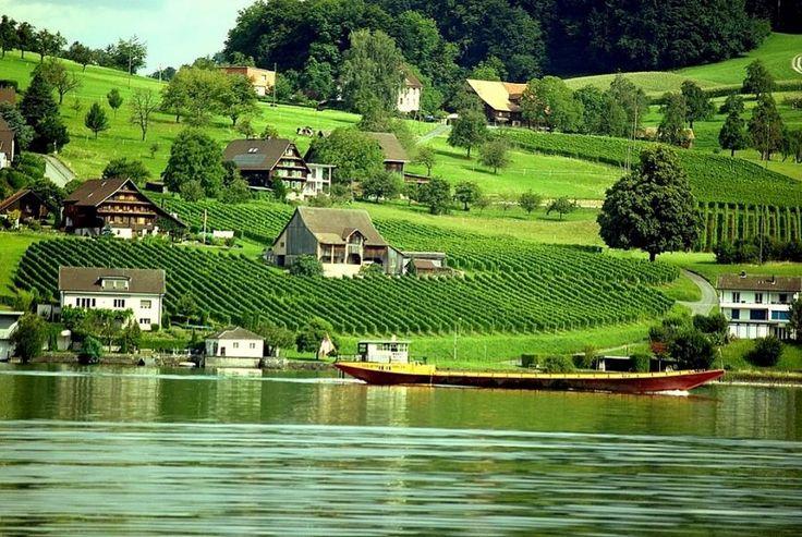 Švajcarska  - Page 2 42d29e54b2ddce0e8f95d8e7ed4bdfaf