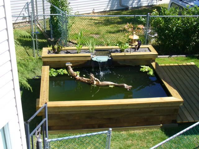 Raised pond with waterfall
