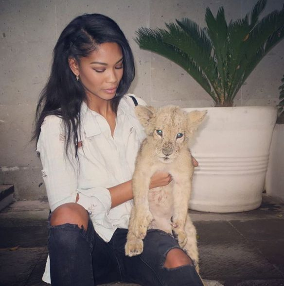 See Chanel Iman Cuddle Up with Baby Lions from InStyle.com