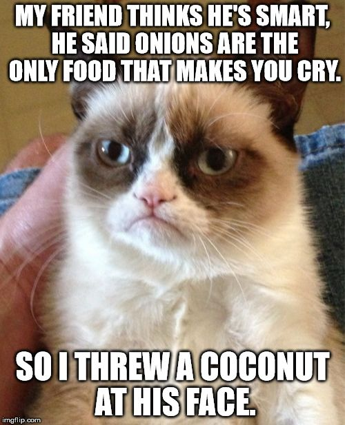 Grumpy Cat | MY FRIEND THINKS HE'S SMART, HE SAID ONIONS ARE THE ONLY FOOD THAT MAKES YOU CRY. SO I THREW A COCONUT AT HIS FACE. | image tagged in memes,grumpy cat | made w/ Imgflip meme maker                                                                                                                                                     More