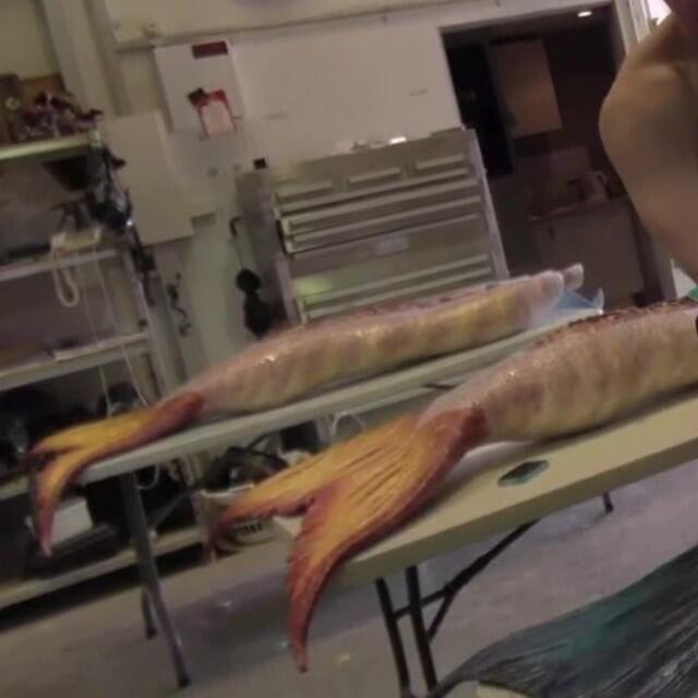 H2o Mermaids H2o Mermaid Tails: Mako Mermaids, Silicone Mermaid Tails