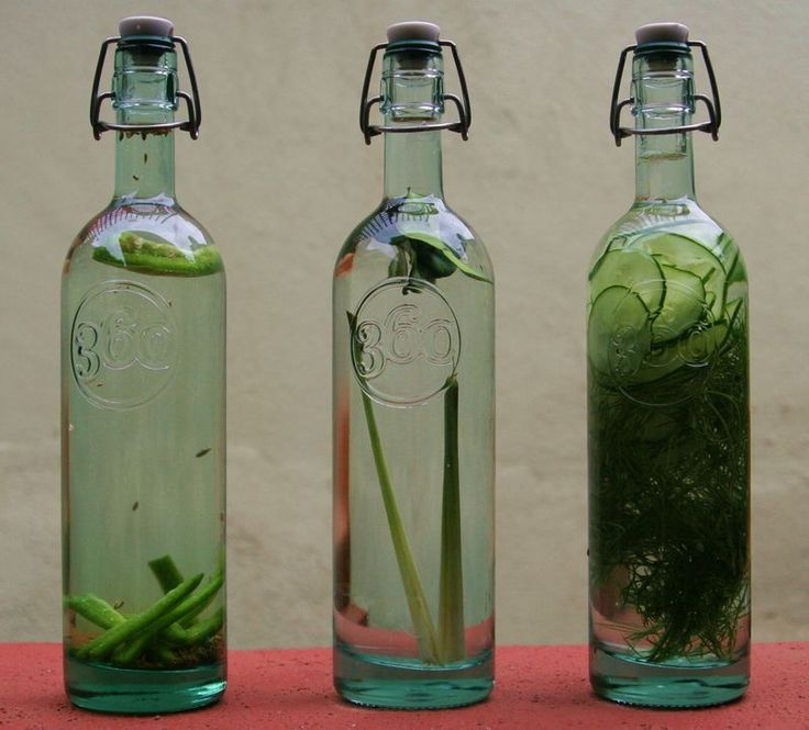 Infused Vodka - Jalapeno Cumin, Lemon Grass Kaffir Lime and Cucumber Dill.