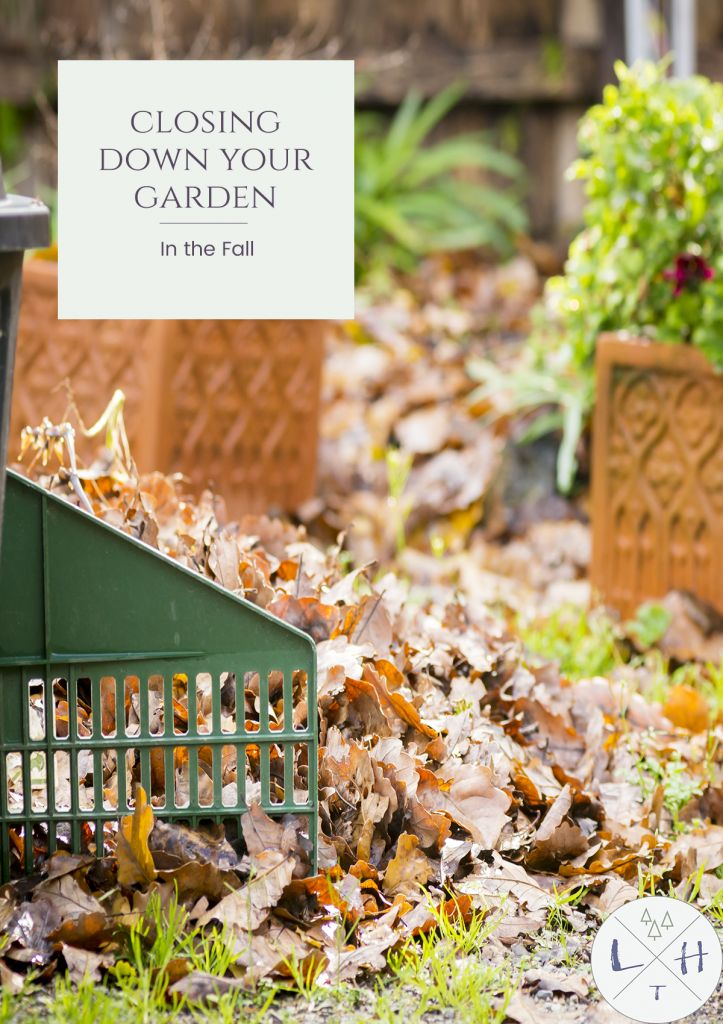 Closing down your garden might be different than you expect but it is definitely necessary to do each fall before winter comes.