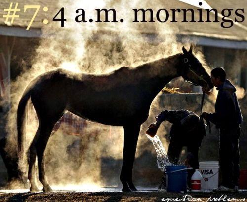 : Hors Stuff, Ears Mornings, Hors Girls Problems, Hors Quotes, Equestrian Problems, Equestrianproblem, Worth It, Racing Horses, Saturday Mornings