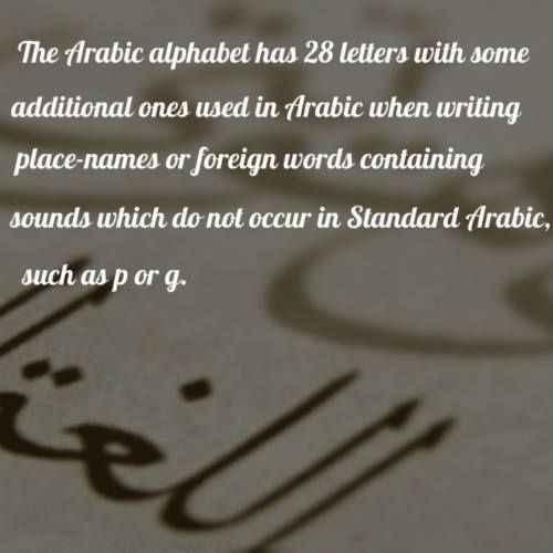 Top 11 Ideas About Fun Facts About Arabic On Pinterest