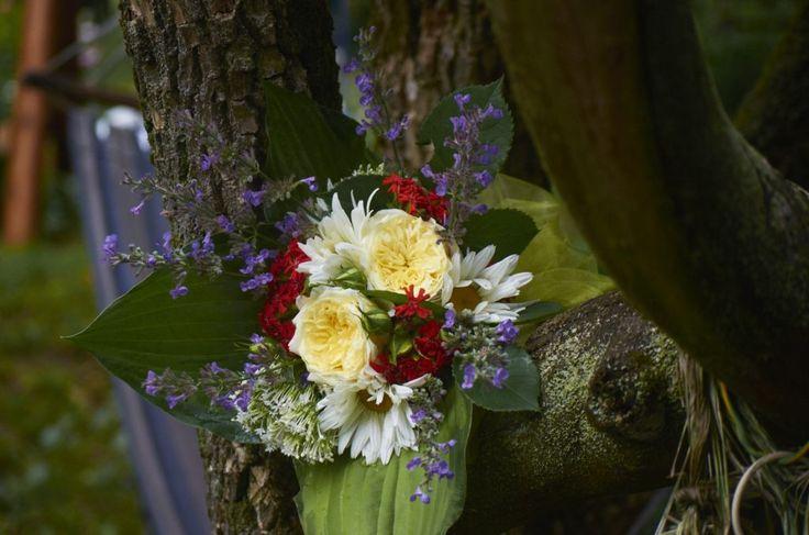 Anglické růže The Pilgrim v kombinaci s červeným kohoutkem chalcedonským, bílou mavuní a kopretinami. Vazba je doplněna šantou a listy bohyšky.