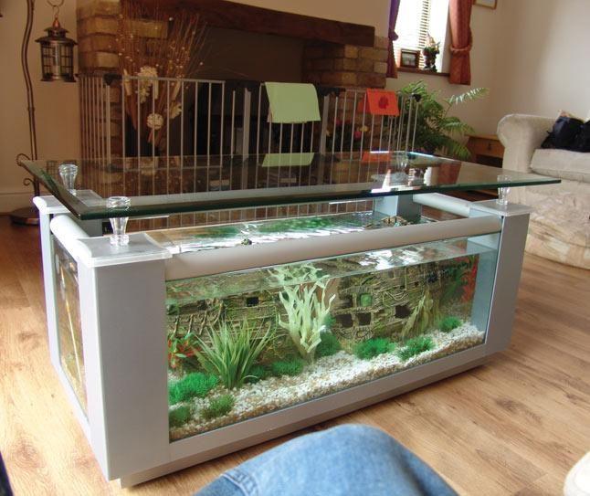 114 best images about aquariums on pinterest - Construire table basse ...
