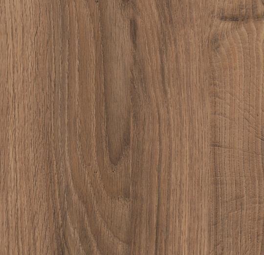 1679 deep country oak