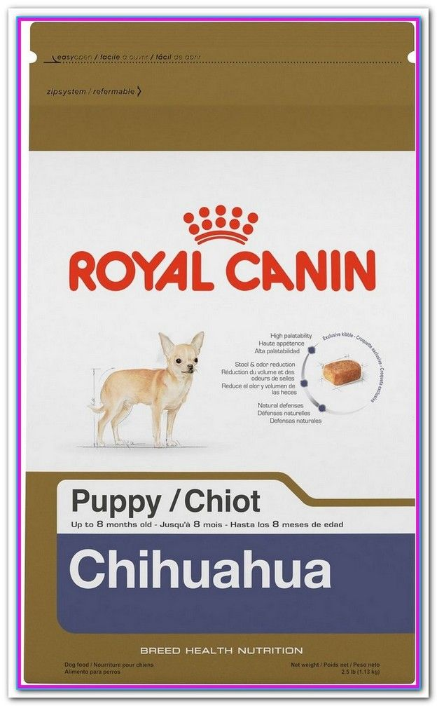 Best Dry Dog Food For Chihuahua Puppy Royal Canin Breed Health Nutrition Chihuahua Puppy Dry Dog Food This R Best Dry Dog Food Dry Dog Food Dog Food Recipes