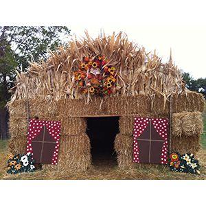 Photos from Hall's Pumpkin Farm and Corn Maze in Grapevine, Texas