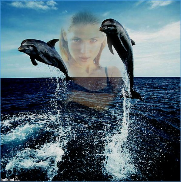 djd/dolphins ,sea and me http://imikimi.com/main/view_kimi/70HR-1u3