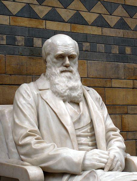 Statue of Charles Darwin.  http://www.rosettabooks.com/