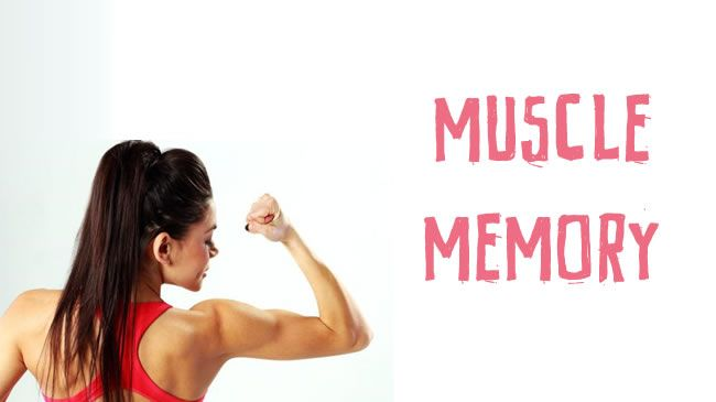 Muscle memory - Blog Post - Emily Skye