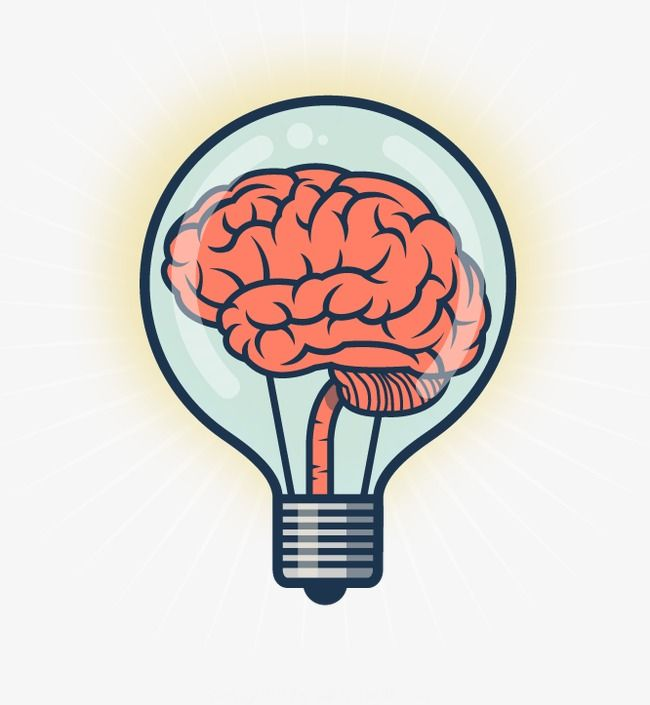 Creative Mind Light Bulb Light Bulb Brain Idea Png Transparent Clipart Image And Psd File For Free Download Creative Mind Map Mind Map Design Mind Map