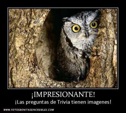 Las preguntas de Trivia tienen imagenes - http://www.fotosbonitaseincreibles.com/las-preguntas-de-trivia-tienen-imagenes/