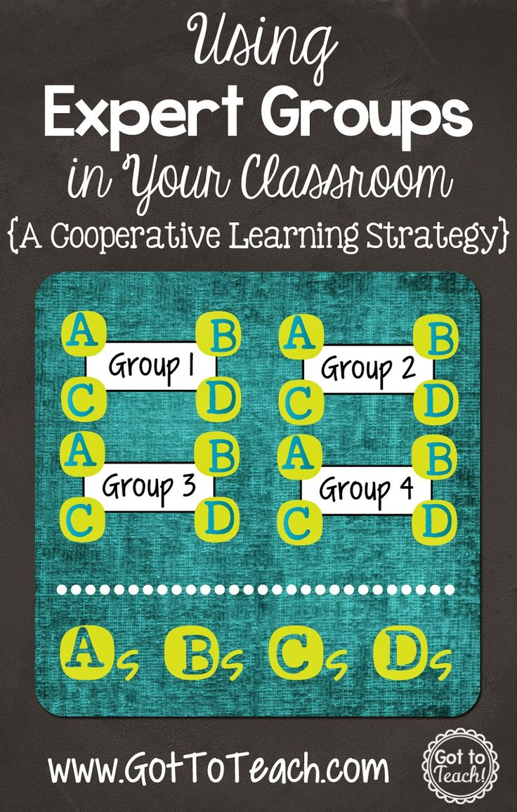 Expert Groups: A Cooperative Learning Strategy
