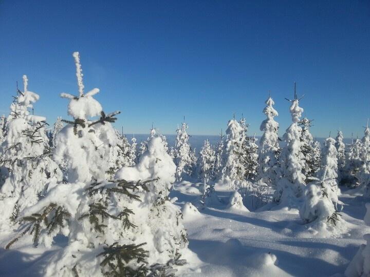 Winterlandschaft Sternstein AT