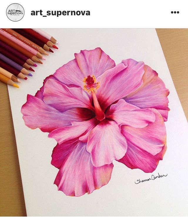 Pin By Madhu Krishnan On Watercolor Art Flower Painting Flower