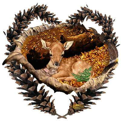 Centerblog.net l'automne+femme+papillion+gif | ... bonne journée sur une superbe créa de l'Automne de mon ami Thierry