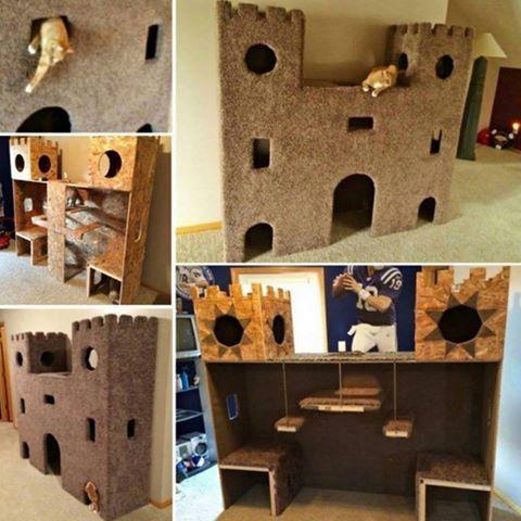 DIY Cat Castle Tutorial   UsefulDIY.com