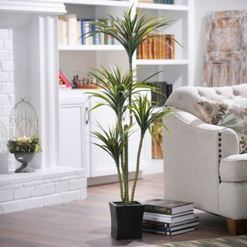 Yucca Tree with Wood Planter, 55 in. | Kirklands