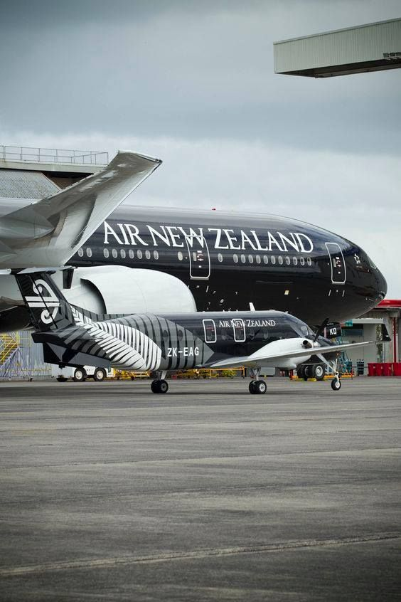 Air New Zealand Link (Eagle Airways) Beechcraft 1900D ZK-EAG c/n UE-430 sitting next to an Air New Zealand Boeing 787-9 Dreamliner