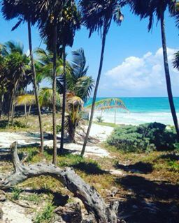 Sian Ka'an ecological reserve, Tulum, Mexico. Some of the most beautiful wild untouched beaches I've ever been to❤️ (Picture by Patricia Guérin)