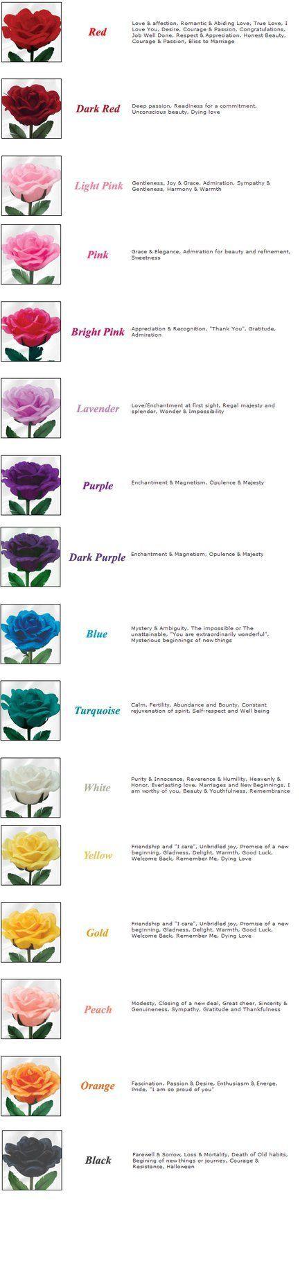Rose Color Meanings by kawaii-panda-aru524 on deviantART: