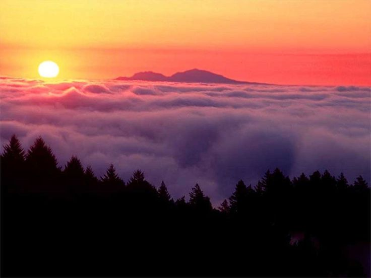 Banco di nuvole al tramonto - Paesaggi - Sfondi Desktop GRATIS