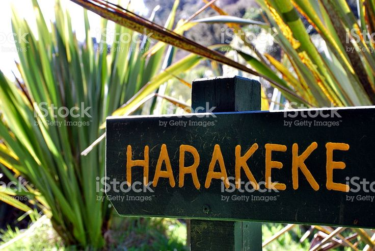 Harakeke Sign (New Zealand Flax)  in Te Reo royalty-free stock photo