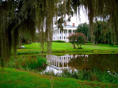 I have no idea where this is, but I would like to live here, thank you.  Maybe around New Orleans because of the hanging moss?  Beautiful!!!