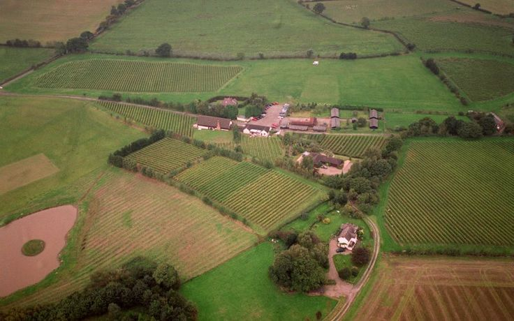 Halfpenny Green Vineyard Crafts