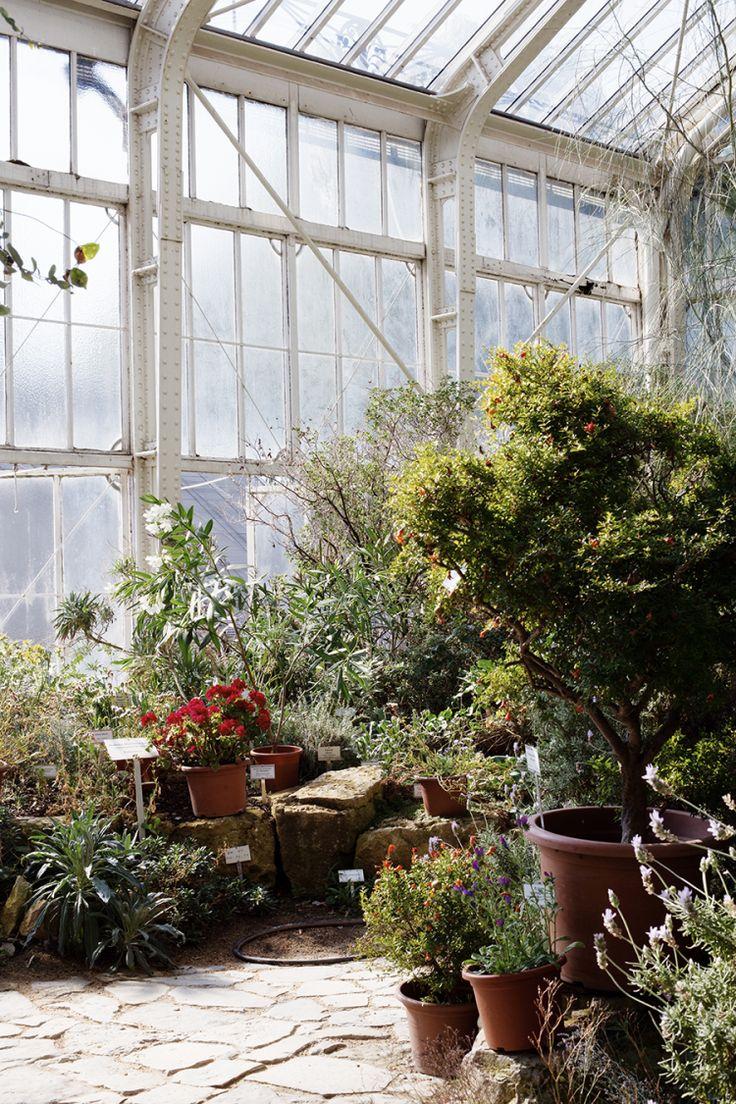 Ботанический сад Берлина— настоящееспасениеоттуристических толп.Зеленый оазис был построен в1897−1910 годах. Всаду растет более 22 тысяч видов растений, аотзастекленных оранжерей трудно оторвать восхищенный взгляд. Поутрам сад удивительно красив, поэтому отправляйтесь сюда спервыми лучами солнца