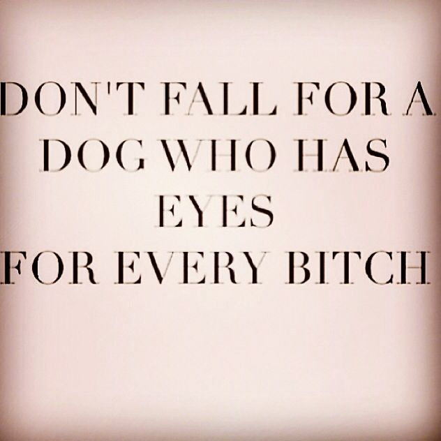 A bitch is a female dog so why wouldn't a dog fall for a bitch? And they'll both screw anything with a hole in it. So yes a bitch and a dog very much belong together. #deepthoughts 😂