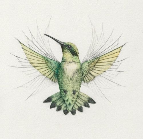 500-daysofart: Couldn't find an artist for this gorgeous hummingbird.