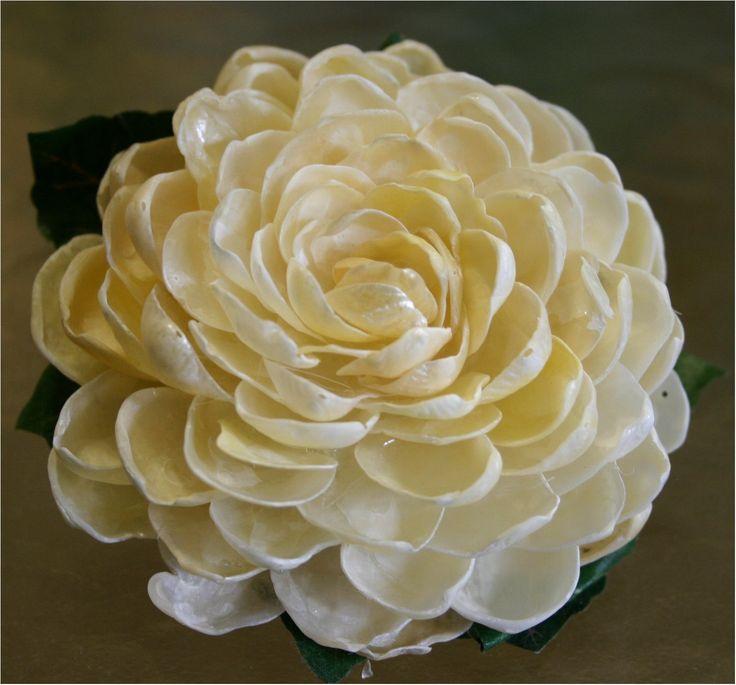 Shell Flower Seashell Flower Jingle Shell Rose On by OceanPetal