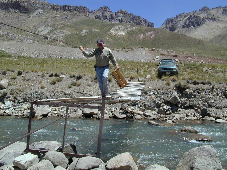 El Pehuenche, Mendoza, Argentina. Puente sobre el estero.