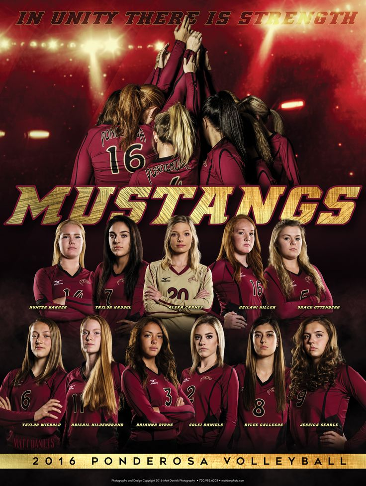 Photography and poster design created for the 2016 Ponderosa volleyball team. Copyright 2016 Matt Daniels Photography.