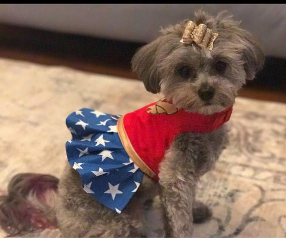 Wonder Woman Inspired Small Dog Harness Dress Made In Usa Dog