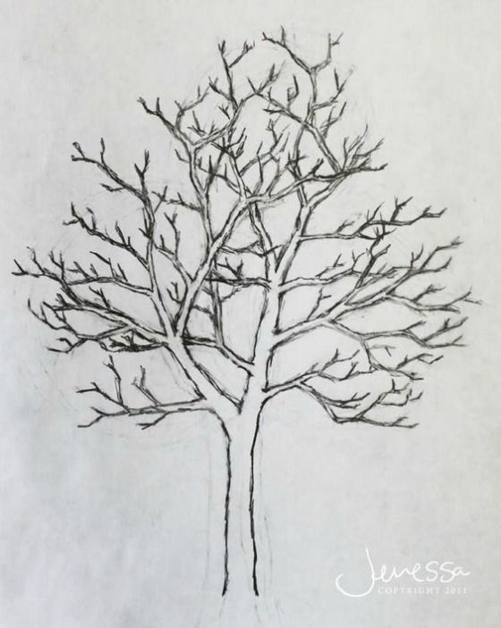 Worksheet. Best 25 Arboles dibujos a lapiz ideas on Pinterest  Tatuaje de