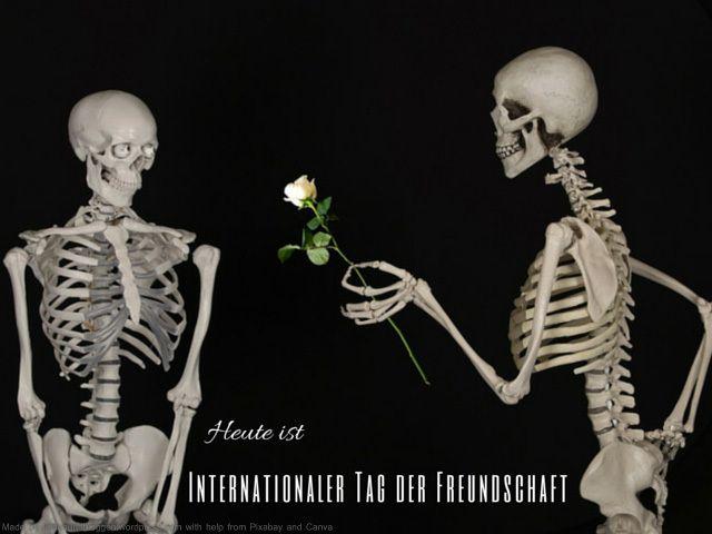Heute ist: Internationaler Tag der Freundschaft