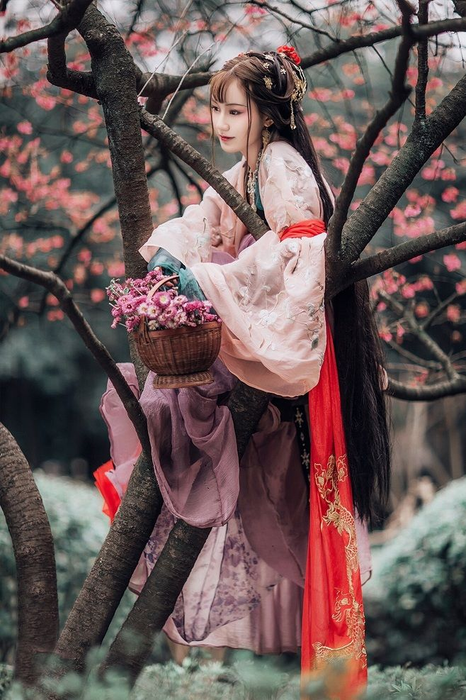my hanfu favorites : Photo