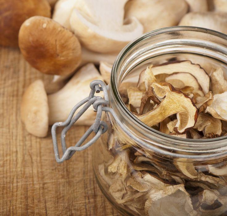 10 Tipps für Pilze im ganzen Jahr!