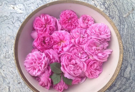 How to Make Rose Infused Vinegar by Karen Larard